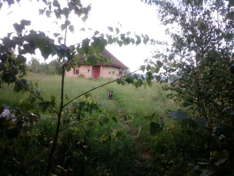 Vatra EmiliAna / EmiliAna's Kin's Domain